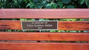 Dedication-Bench-Tillie Goldhor Heller, 2014