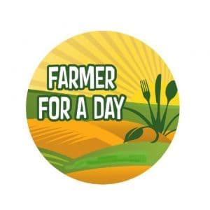 Farmer For a Day, New Egypt Flea Market, NJ